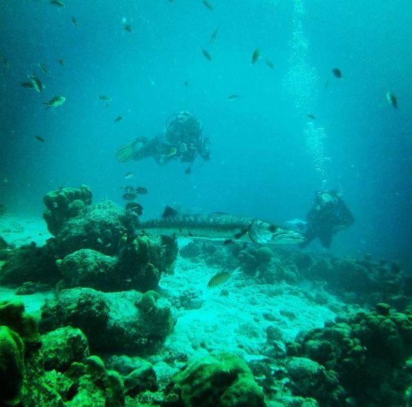 Bonaire1-09
