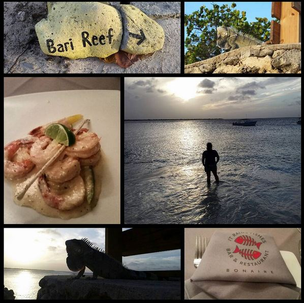 Bonaire2-02