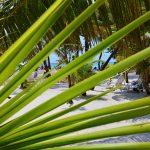 Florida Cruise Part 1: Allure of the Seas, Nassau, Cozumel
